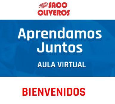 Saco Oliveros virtual